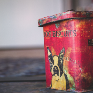 A guide to interpreting pet food labels